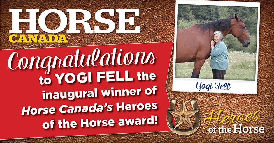 Yogi Wins Horse Canada's Hero of the Horse Award